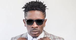 I meant no harm; I am sorry – Shatta Wale